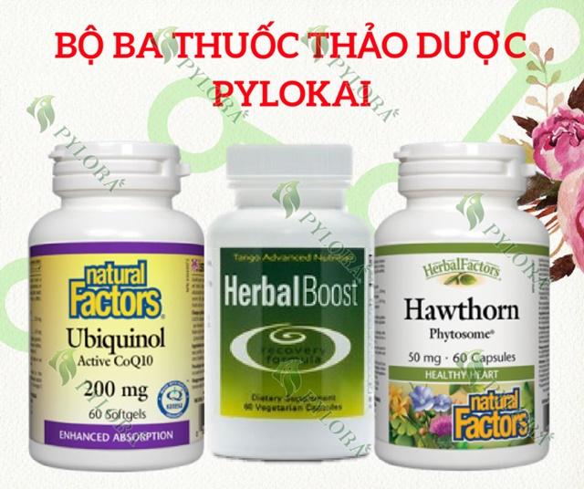 Bộ ba dược thảo PyLoKai ngăn ngừa và khắc phục đột quỵ